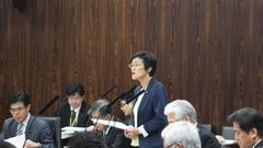 中活法質疑の写真 20140417.JPG
